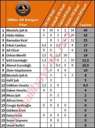 3-2014-alt-kategori-pilot-son